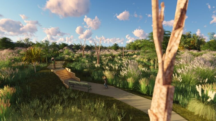 Using Biophilic Design To Integrate Water Sensitive Design With Land Development | Calibre Group