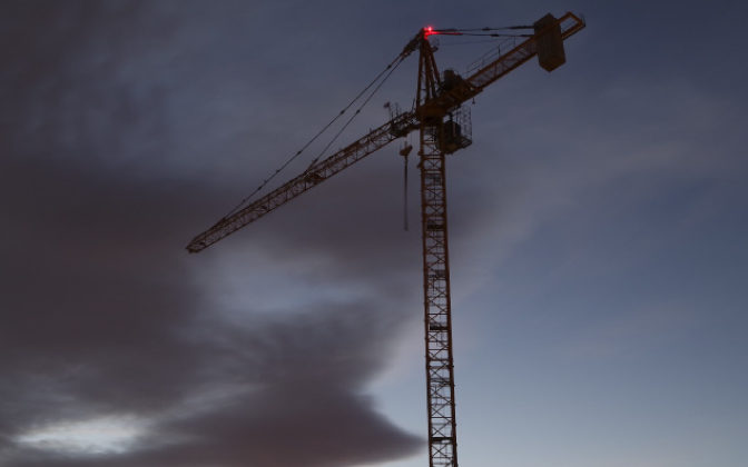 Crane Against Dark Sky